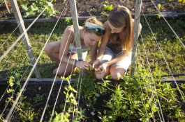 Deborah Hilbert and Abby Sucsy identify a plant in the Eckerd College garden. - Julie Branaman