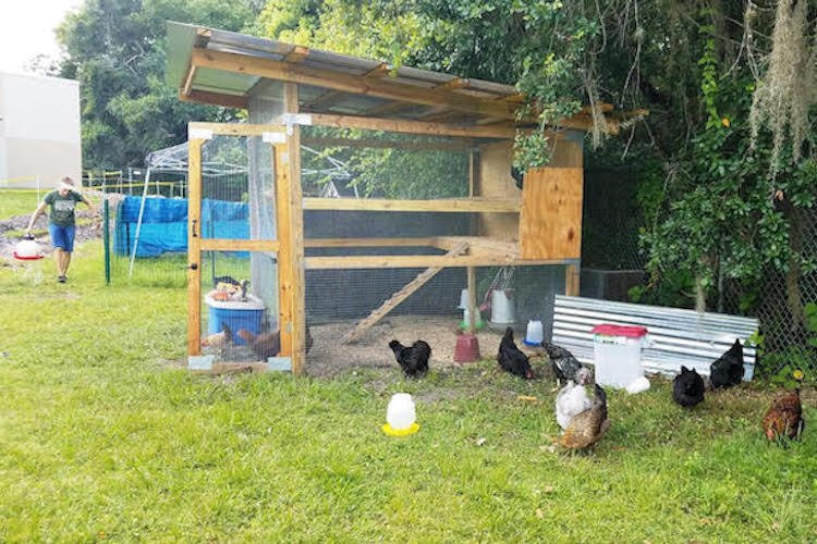 Walker Middle School Ag Club maintains a chicken coop.