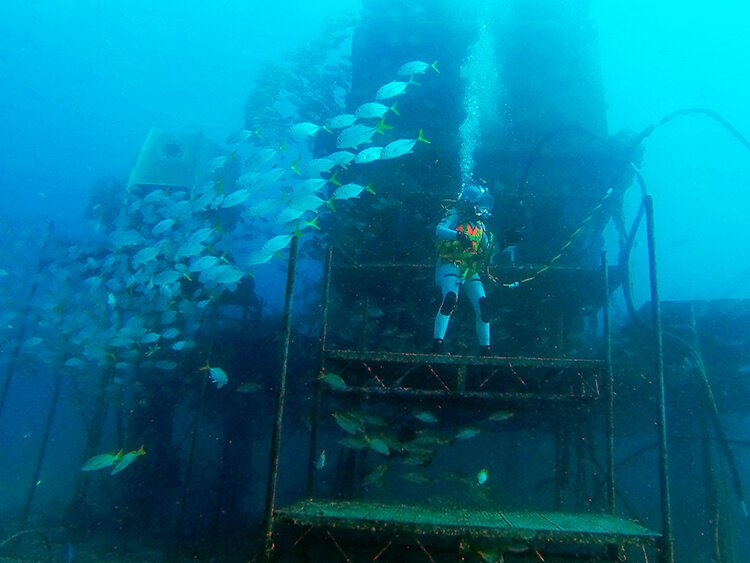 Dr. Csilla Ari D'Agostino at the front of the Aquarius undersea habitat.