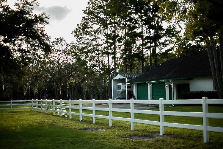 Florida greenery blends into this barn on the Northwest Hillsborough property.