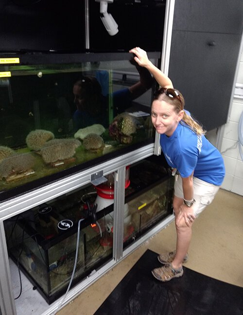 Keri O'Neil looks into a tank where artificial lights used to induce coral to spawn.