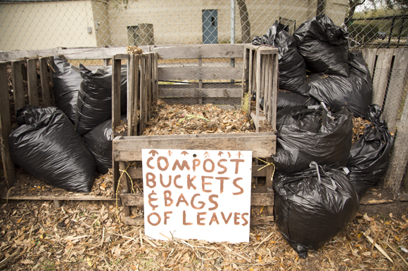 Compost bins at the Sustainable Living Project. - Julie Branaman