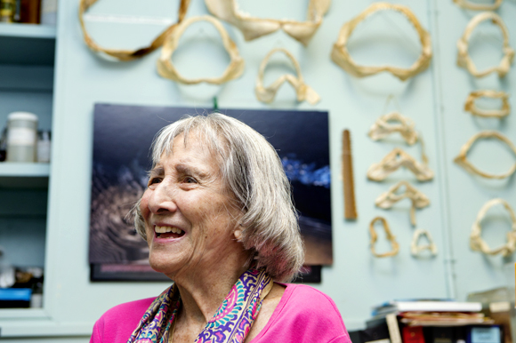 Dr. Eugenie Clark in her office at Mote Marine Laboratory. - Julie Branaman