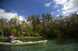 Florida Wildlife Corridor Expedition co-founder Carlton Ward paddles the Rainbow River during a Trail Mixer.