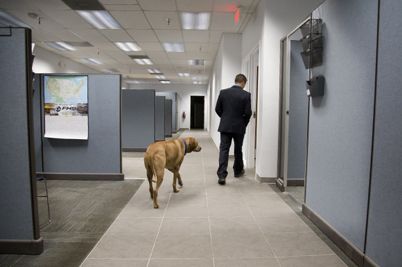 Jay and his dog Tegene walk through the Hydro-Dyne office.