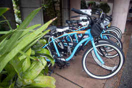 Bike rental available at Grand Hyatt.