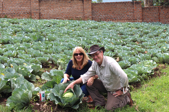Mike and Deb Gilbert with first cabbage harvest.