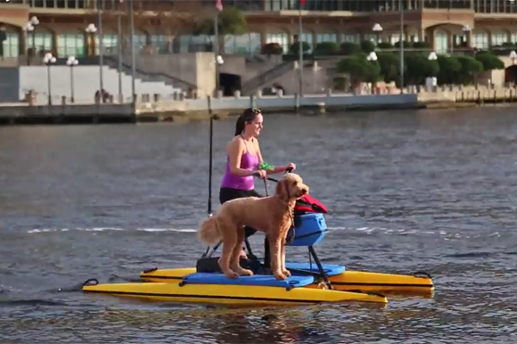 The gift of experiences the present of your presence tampa bay water bike company negle Gallery