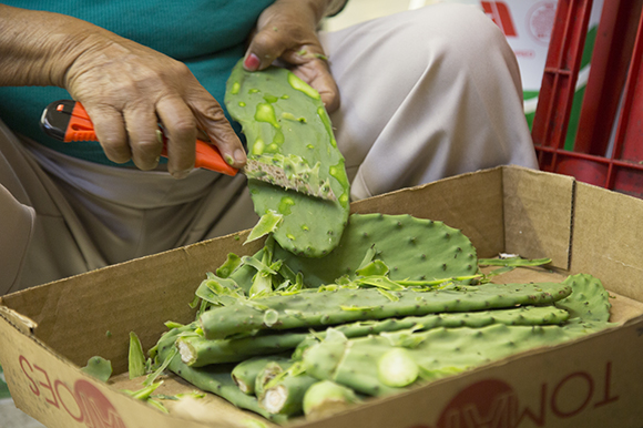 Reyna Rocha prepares cactus leaves for cooking.
