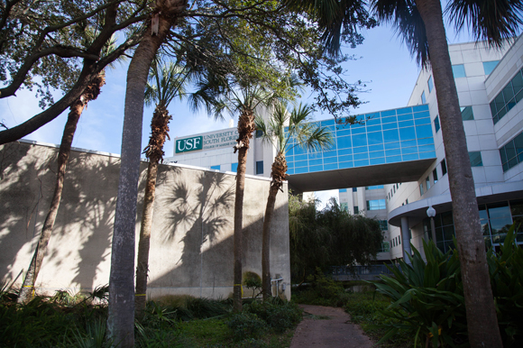 USF College of Marine Science in St. Pete.