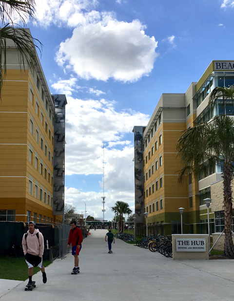 Skateboarding, bicycling and walking are primary modes of transportation on the USF Tampa campus.