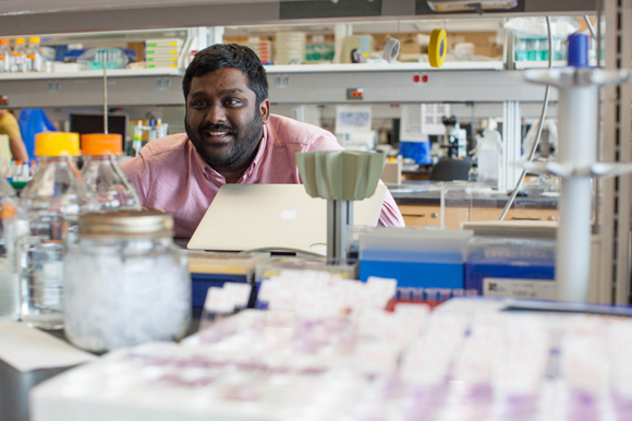 Swamy Adapa, a biological scientist, performs data analysis  for malaria studies.