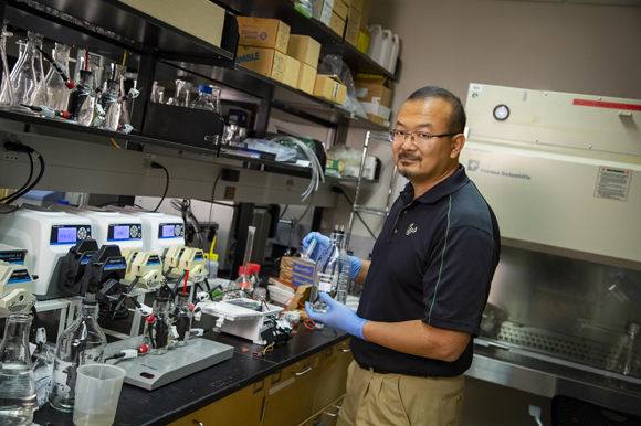Dr. Daniel Yeh working in his lab at USF.