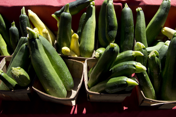 Worden Farm zuccini at the Saturday Morning Market in St Pete.