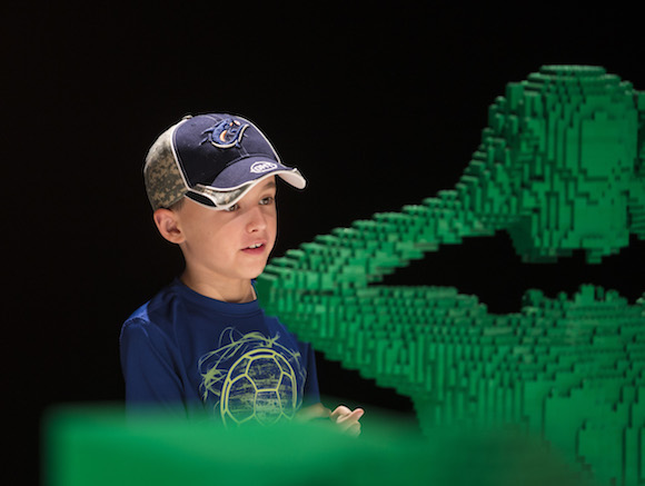A young fan takes in The Art of the Brick