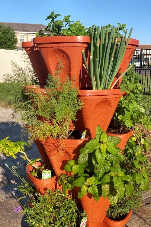 A self-watering stacked planter in Amber Garcia Hand's yard.
