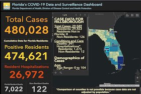 COVID-19 cases in Florida as of Aug. 1, 2020.