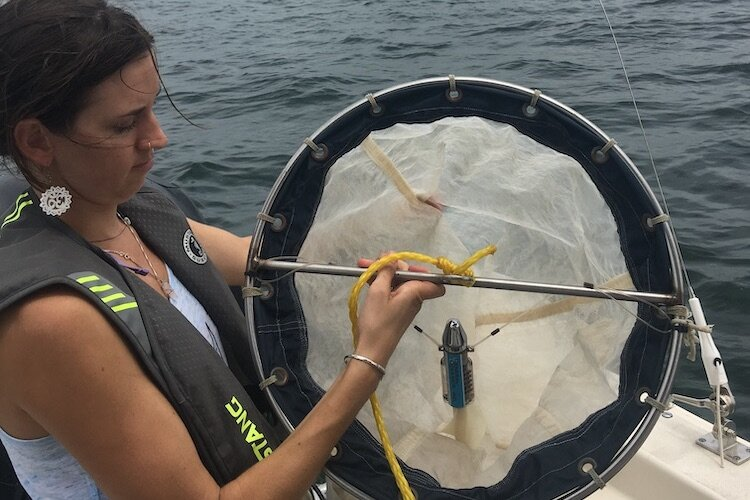 USF St. Pete researcher Kinsley McEachern checks the netting capturing plankton and plastics in the waters of Tampa Bay.