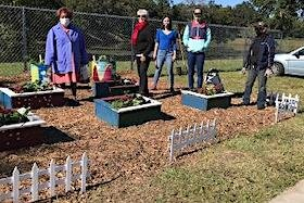 The Healthy 22nd Street Initiative promotes gardening as a solution to food insecurity in East Tampa.