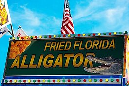 Few visitors get away from Florida without at least trying a little fried gator.